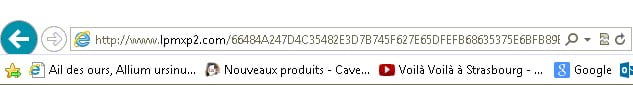 20140521-ebay-publicite-redirection-maj-lecteur-video-necessaire-malware-lpmxp2.com-01